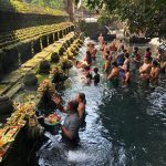 Ubud Tour - Pure Culture Day Trip - The Most Favorite Tour in Bali