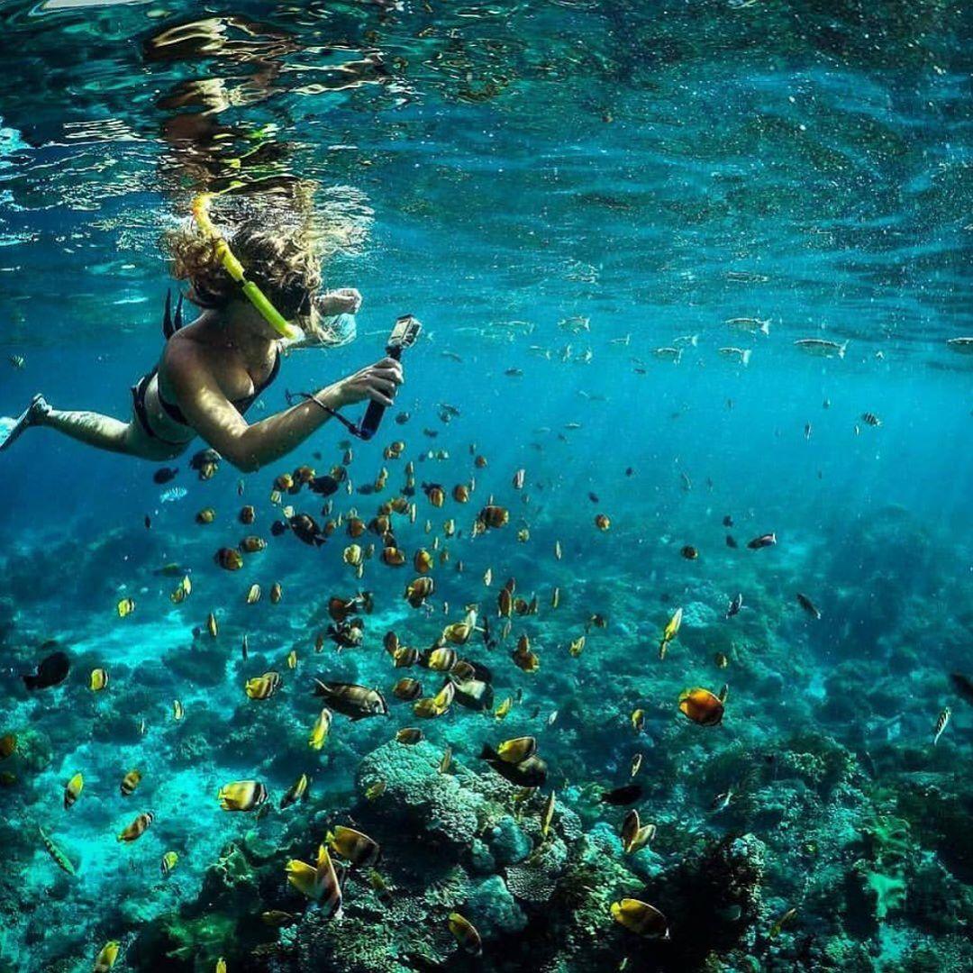 Gamat Bay Nusa Lembongan